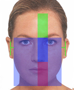 ширина лица