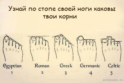 форма пальцев тип