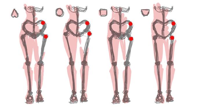 4 формы женского таза, 4 формы ягодиц, строение тела